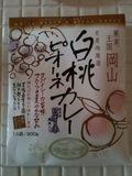 20100207_hakutou.jpg