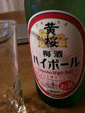 20100901_umeshu.JPG