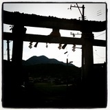20101022_shinguu1.JPG