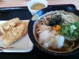 20110915_murasaki1.JPG