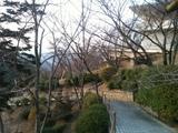 20111215_senkouji.JPG