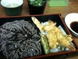 20111221_tenzaru.JPG