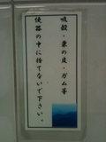 20120111_miyajima2.JPG