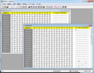 20120217_binary_editor.jpg