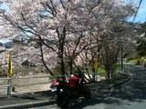 20120415_bike2.JPG