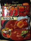 20131029_mega_kara.JPG
