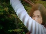 20131208_kyouryuujyaa.JPG