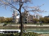 20140328_hanami.JPG