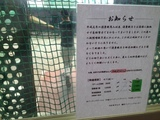 20140817_batting.JPG